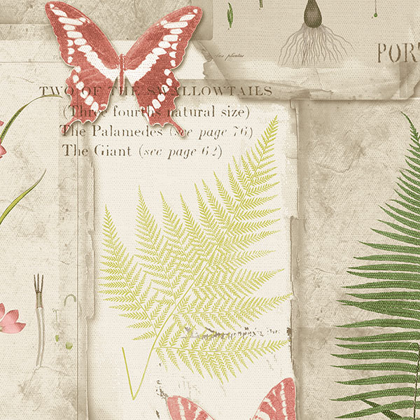 red green and brown fern leaves on beige wallcovering