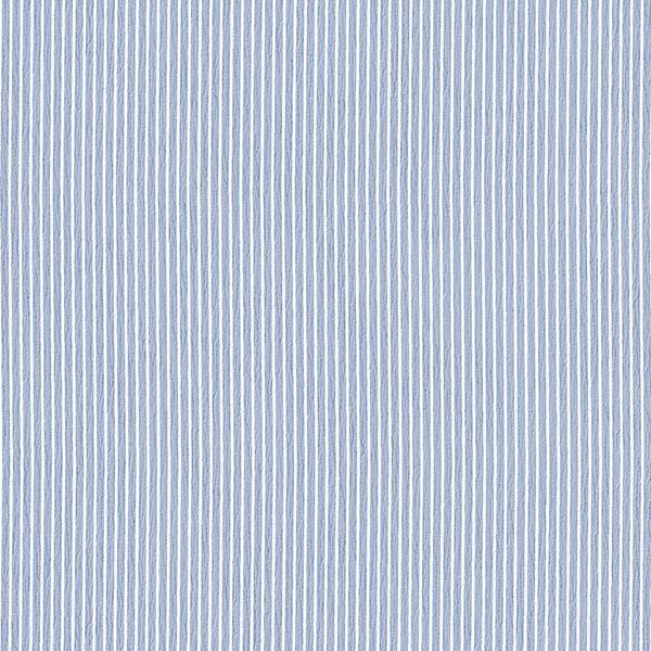 blue stripe wallcovering