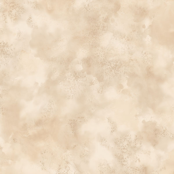 Tan and cream lunar texture wallcovering
